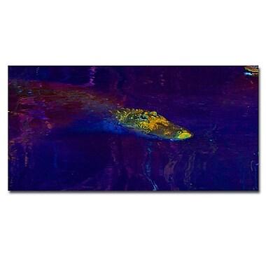 Trademark Fine Art Gator I by Patty Tuggle Ready To Hang Canvas 12 x 24