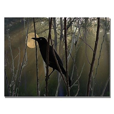 Trademark Fine Art Patty Tuggle 'Nevermore Night and Day' Canvas Art
