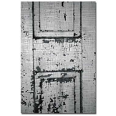 Trademark Fine Art Patty Tuggle 'Chippy Paint' Canvas Art 14x19 Inches