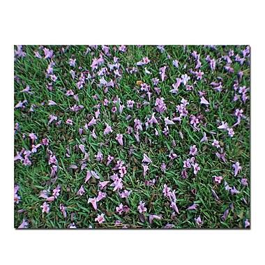 Trademark Fine Art Fallen Flowers by Patty Tuggle-Canvas Art