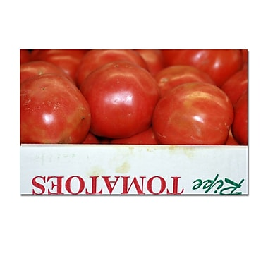 Trademark Fine Art Tomatoes by Patty Tuggle-18x32 Ready to Hang Canvas Art