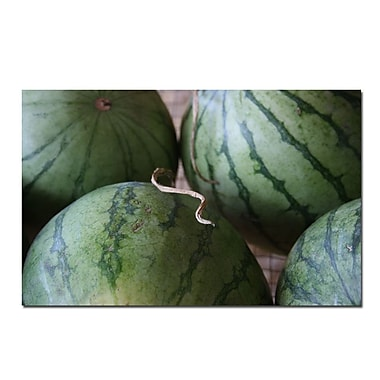 Trademark Fine Art Summer Watermellons by Patty Tuggle-18x32 Canvas Art