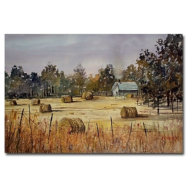 Trademark Fine Art Ryan Radke 'Autumn Gold' Canvas Art 22x32 Inches