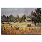 Trademark Fine Art Ryan Radke 'Autumn Gold' Canvas Art 16x24 Inches