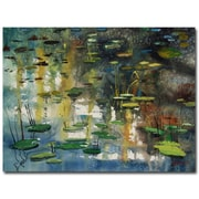 Trademark Fine Art Ryan Radke 'Faces in the Pond' Canvas Art 35x47 Inches