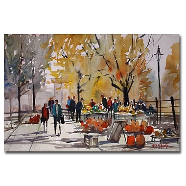 Trademark Fine Art Ryan Radke 'Farm Market' Canvas Art 30x47 Inches