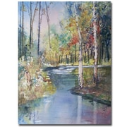 Trademark Fine Art Ryan Radke 'Hartman Creek Birches' Canvas Art 35x47 Inches