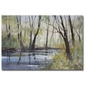 Trademark Fine Art Ryan Radke 'Pine River Reflections' Canvas Art 16x24 Inches