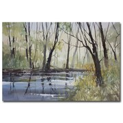 Trademark Fine Art Ryan Radke 'Pine RIver Reflections' Canvas Art 30x47 Inches