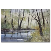 Trademark Fine Art Ryan Radke 'Pine River Reflections' Canvas Art