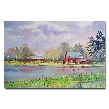 Trademark Fine Art Ryan Radke 'View from the Millpond' Canvas Art 16x24 Inches
