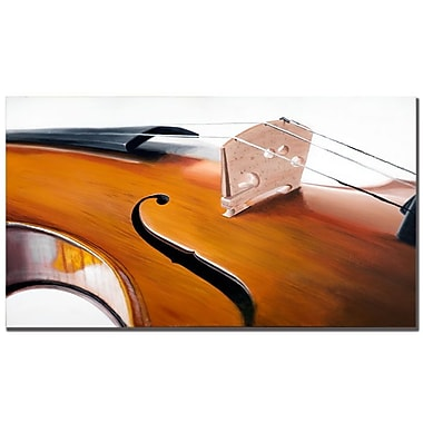 Trademark Fine Art Roderick Stevens 'Music Store II' Canvas Art 14x24 Inches