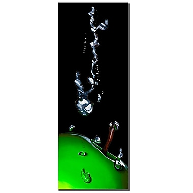 Trademark Fine Art Roderic Stevens 'Granny Splash' Canvas Art