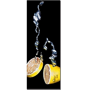 Trademark Fine Art Roderic Stevens 'Lemon Splash' Canvas Art