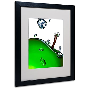 Trademark Fine Art Roderick Stevens 'Granny Splash II' Matted Art Black Frame 16x20 Inches