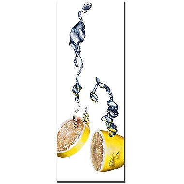 Trademark Fine Art Roderick Stevens 'Lemon Splash II ' Canvas Art 12x32 Inches