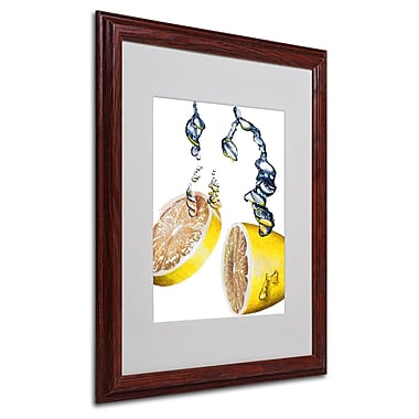 Roderick Stevens 'Lemon Splash II' Framed Matted Art - 16x20 Inches - Wood Frame