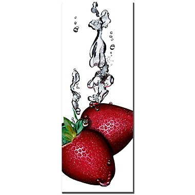 Trademark Fine Art Roderic Stevens 'Strawberry Splash II ' Canvas Art 12x32 Inches