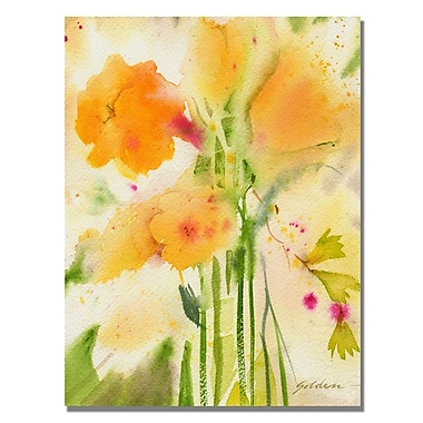 Trademark Fine Art Shelia Golden 'Orange Flowers' Canvas Art 35x47 Inches