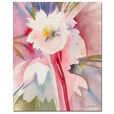 Trademark Fine Art Sheila Golden 'White Flower Shadow' Canvas Art