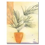 Trademark Fine Art Shelia Golden 'Palm' Canvas Art 24x32 Inches