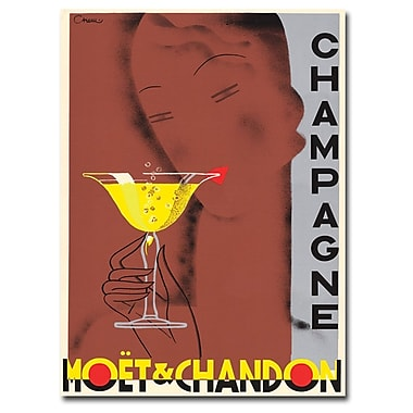 Trademark Fine Art Champagne Moet & Chandon by Chem-Ready to Hang Art