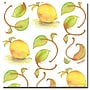 Trademark Fine Art Wendra 'Lemons' Canvas Art 24x24
