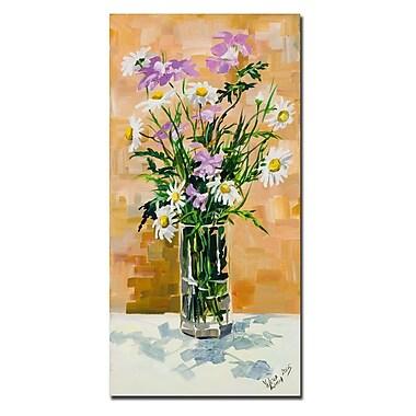 Trademark Fine Art Yelena Lamm 'Daisies' Canvas Art