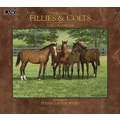 LANG® Fillies & Colts 2014 Wall Calendar