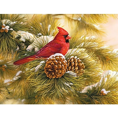 LANG® December Dawn Cardinal Boxed Christmas Card