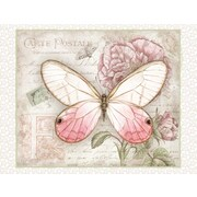 "LANG® 4"" x 5 1/4"" 12/Pack Carte Postale Butterflies Deluxe Note Cards, 12/Set"