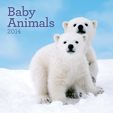 Avalanche® Baby Animals 2014 Wall Calendar, 12in. x 12in.