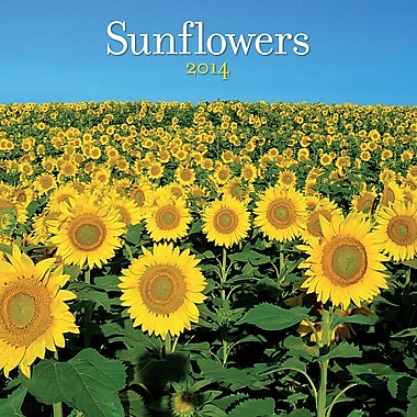 Avalanche® Sunflowers 2014 Wall Calendar, 12in. x 12in.