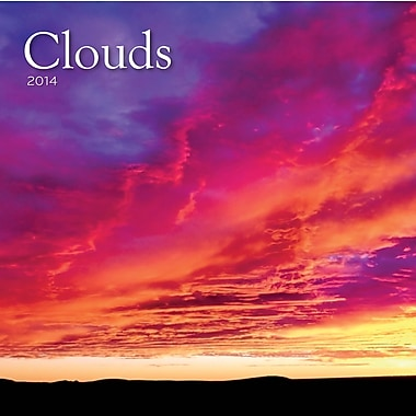 Avalanche® Clouds 2014 Wall Calendar, 12in. x 12in.