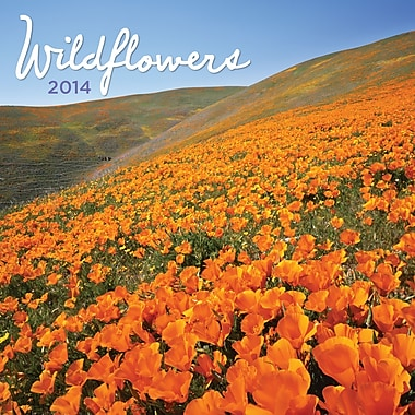 Avalanche® Wildflowers 2014 Wall Calendar, 12in. x 12in.