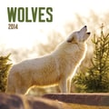 Avalanche® Wolves 2014 Wall Calendar, 12in. x 12in.