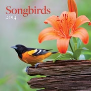 Avalanche® Songbirds 2014 Wall Calendar, 12 x 12