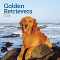 Avalanche® Golden Retrievers 2014 Wall Calendar, 12in. x 12in.