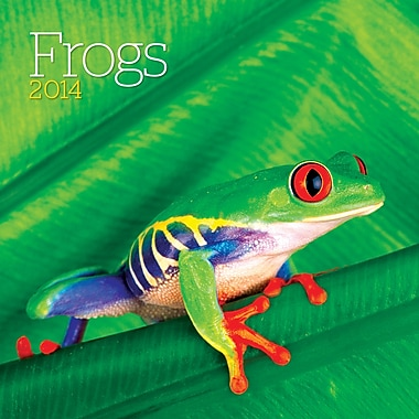 Avalanche® Frogs 2014 Wall Calendar, 12in. x 12in.