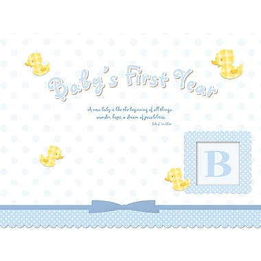 Avalanche® Baby's Boy's First Year Sticker Calendar, 9in. x 12in.