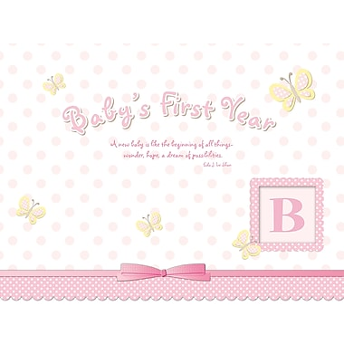 Avalanche® Baby's Girl First Year Sticker Calendar, 9in. x 12in.
