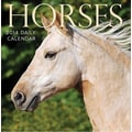 Avalanche® Horses 2014 Box Calendar, 5 1/4in. x 5 1/4in.