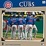 Turner Licensing Chicago Cubs 2014 Team Wall Calendar,