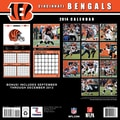 Turner Licensing® Cincinnati Bengals 2014 Team Wall Calendar, 12in. x 12in.