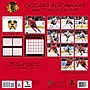 Turner Licensing® Chicago Blackhawks 2014 Team Wall Calendar,