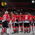 Turner Licensing® Chicago Blackhawks 2014 Team Wall Calendar, 12in. x 12in.