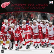 Turner Licensing® Detroit Red Wings 2014 Team Wall Calendar, 12 x 12