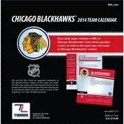 Turner Licensing® Chicago blackhawks 2014 Box Calendar, 5 1/4 x 5 1/4