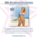Turner Licensing® Dallas Cowboy Cheerleaders 2014 Box Calendar, 5 1/4in. x 5 1/4in.
