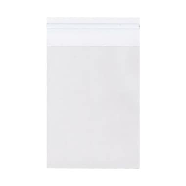 JAM Paper® 4 15/16in. x 6 9/16in. Cello Sleeves Envelopes w/Self Adhesive Closure, Clear, 100/Pack